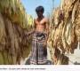 রংপুর অঞ্চলে তামাকের আগ্রাসন: বাড়ছে তামাক চাষের জমি